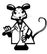 lab rat 175X175